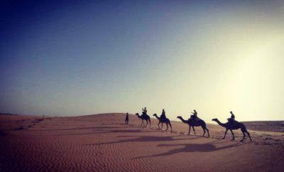 PLUME TOURISTIQUE DE ZÉINA » Voyage vers un incroyable paysage dunaire»